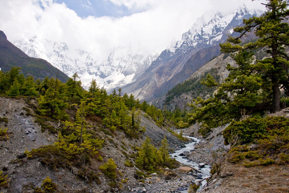 Valley leading to Annapurna Massif