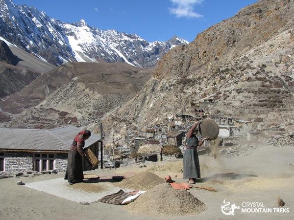 women drying rice