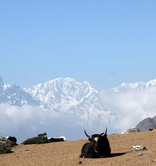 Tsum Valley, Crystal Mountain Treks, Nepal