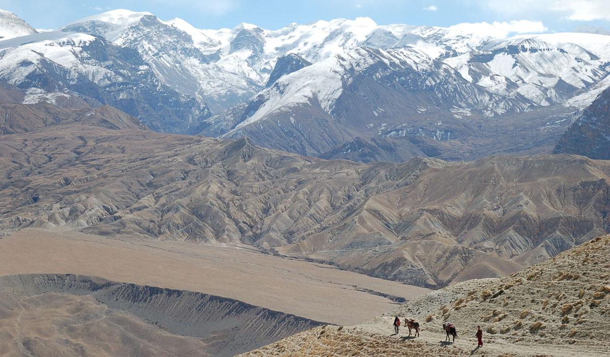 High mountain trail, Mustang