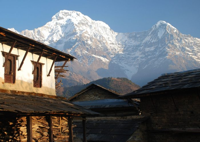 Lodge Trek, Annapurna South looms over Kimrong danda