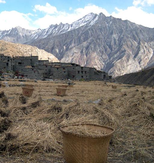 limi, Nepal