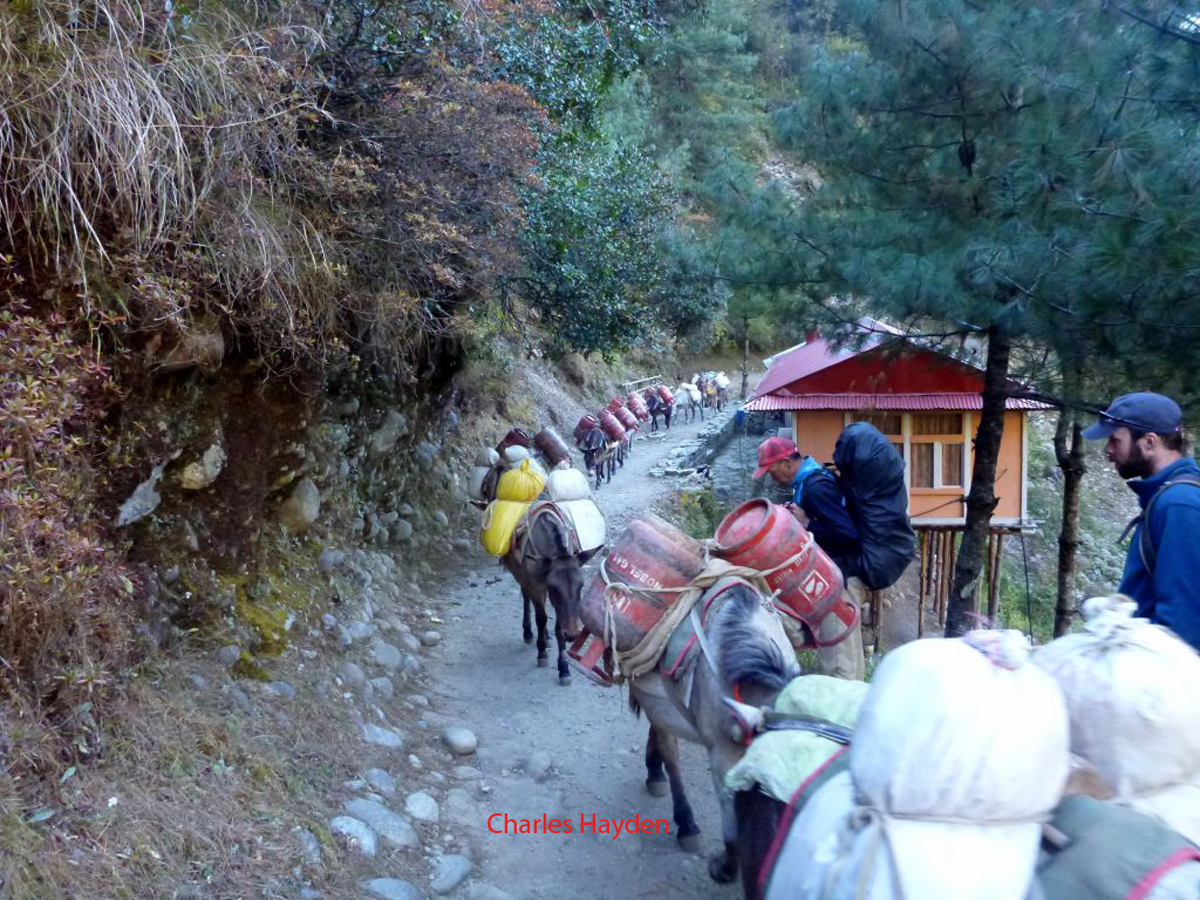 Trek traffic jam, Ultimate Everest Trek