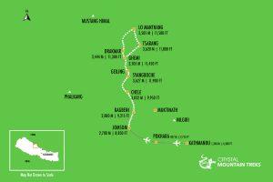Mustang map