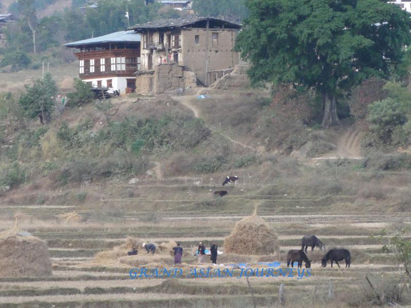life in rural Bhutan